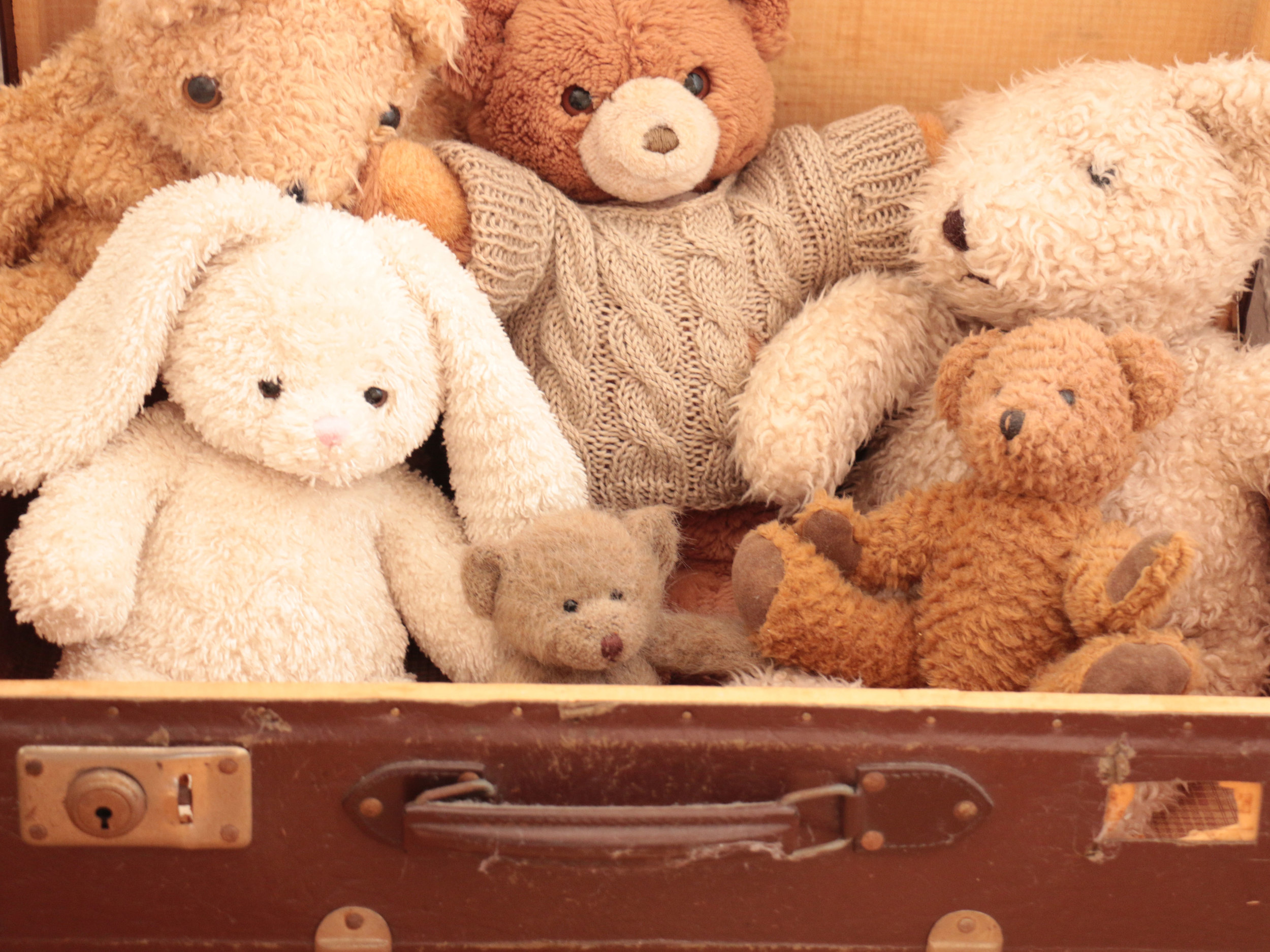 teddys.jpg