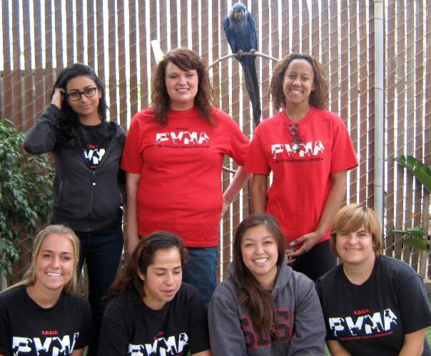 SDSU's Future Veterinarian Club regularly comes out to help out at Free Flight.