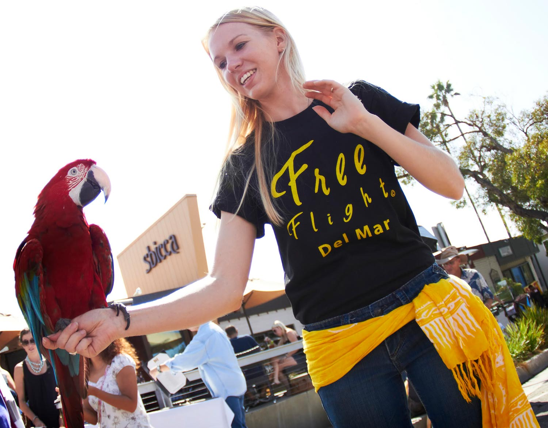 Free Flight Bird Outreach Event.jpg