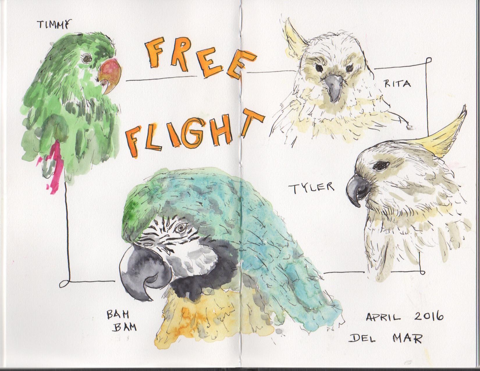 Sketch by Judy Langhoff