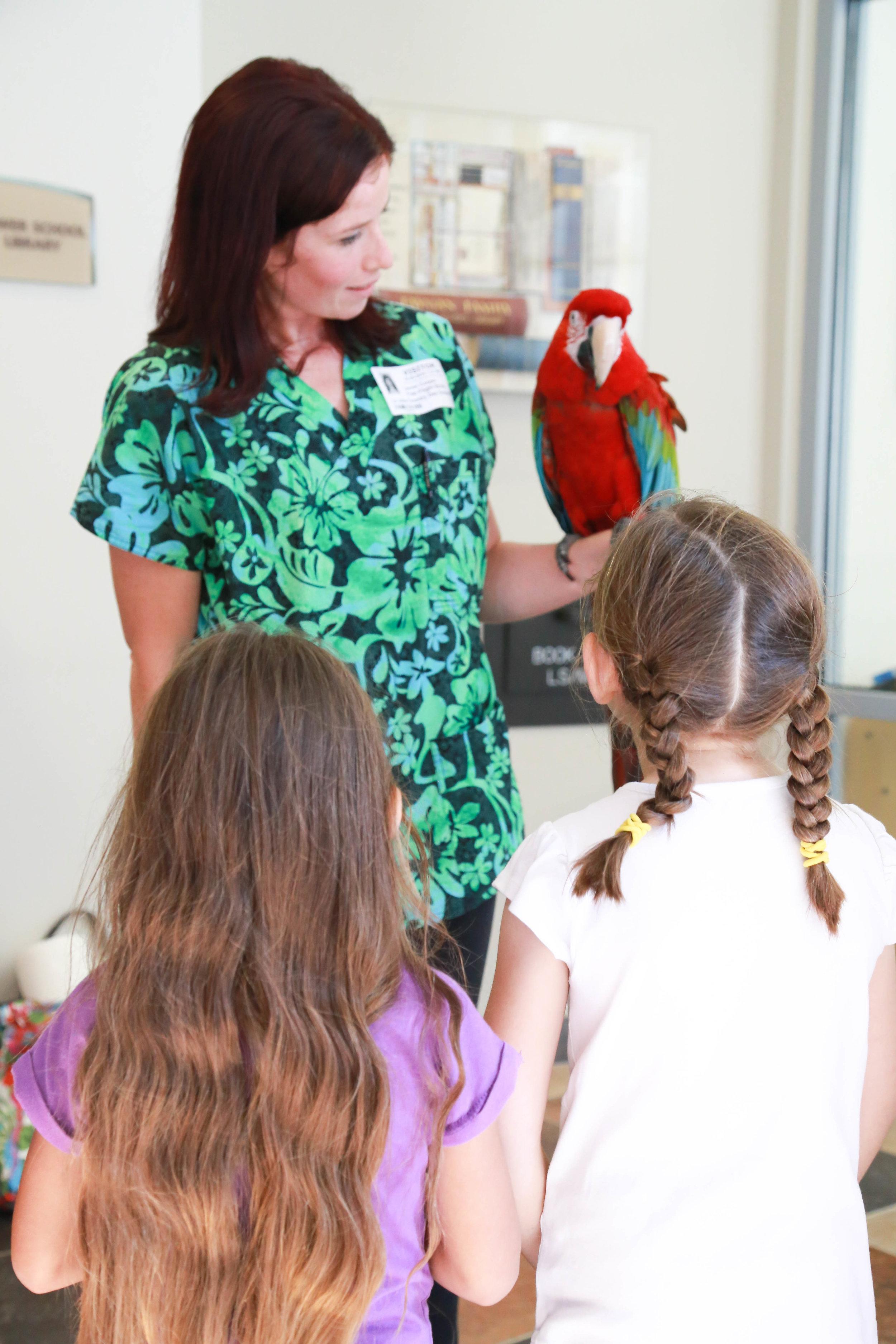 Students learn about what makes a parrot so unique [Photo: Rachel Baxter, LJCDS]