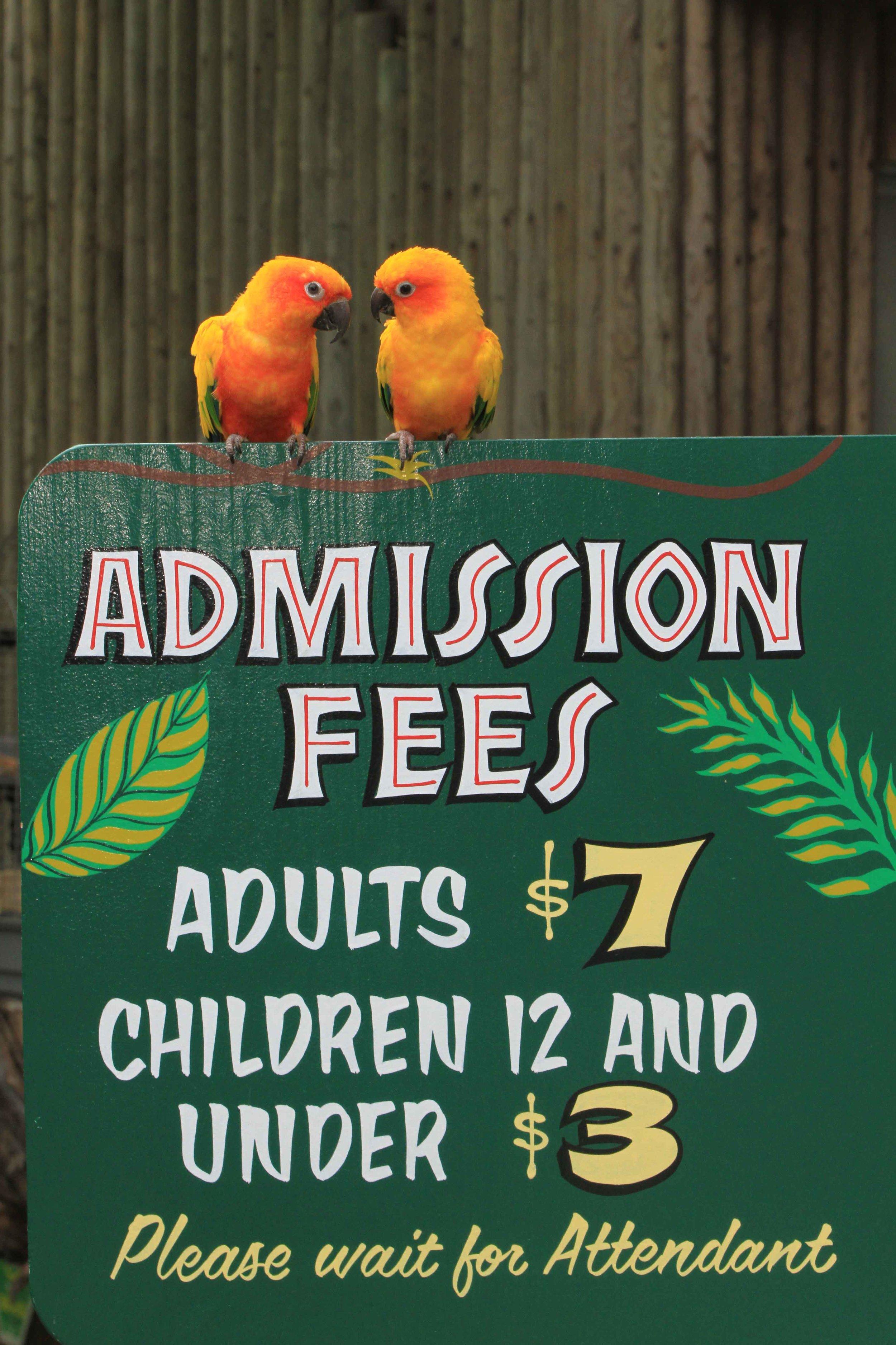 admission2.jpg