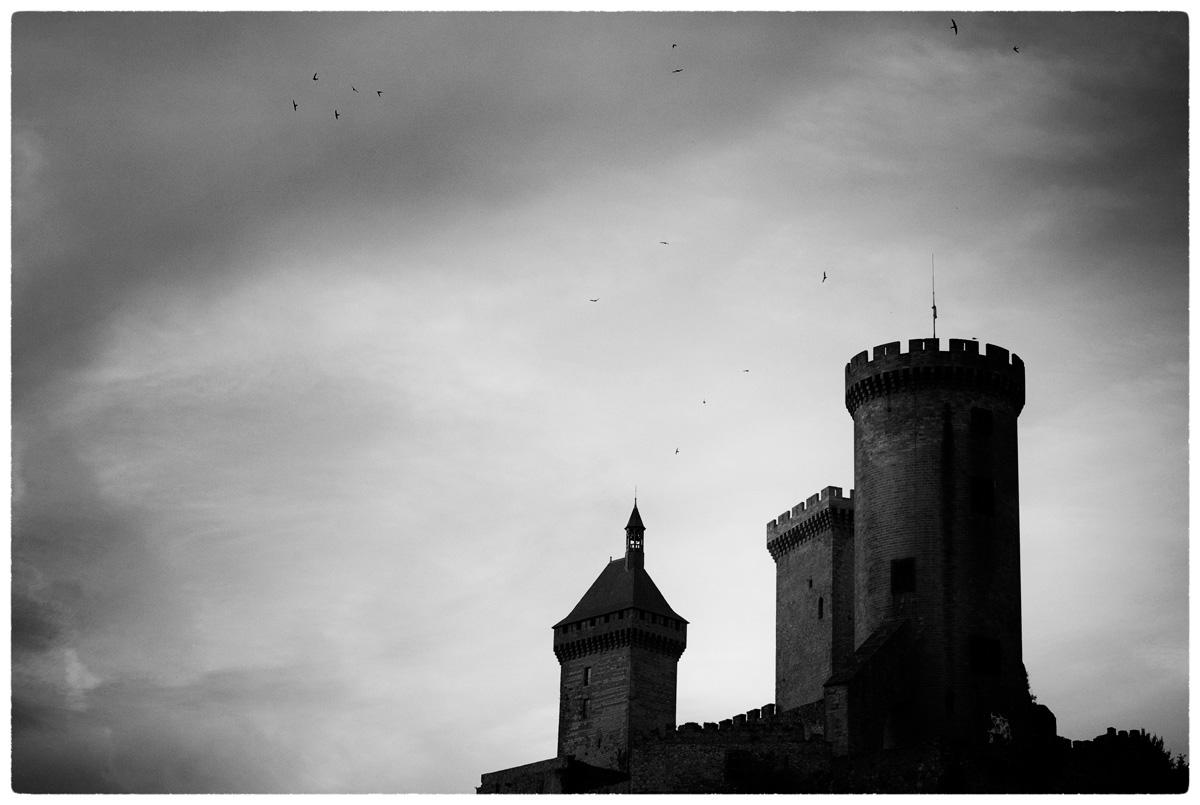 © WHERE BIRDS GO (Part 5) by DELAFOI