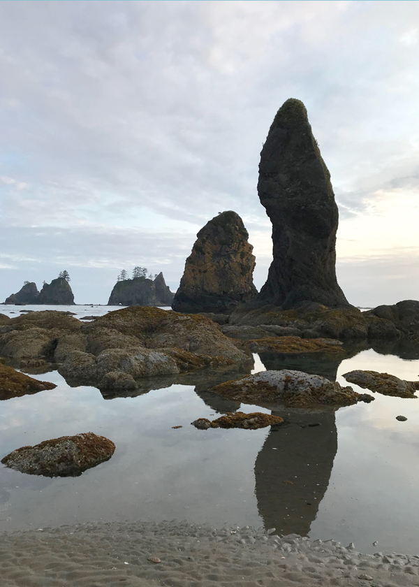 Dramatic rock formations and sea stacks at Shi Shi Beach, Point of Arches in Olympic Peninsula Washington