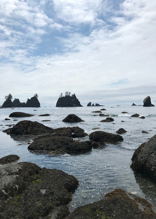 rocky ocean coastline with dramatic sea stacks on Olympic Peninsula in Washington state
