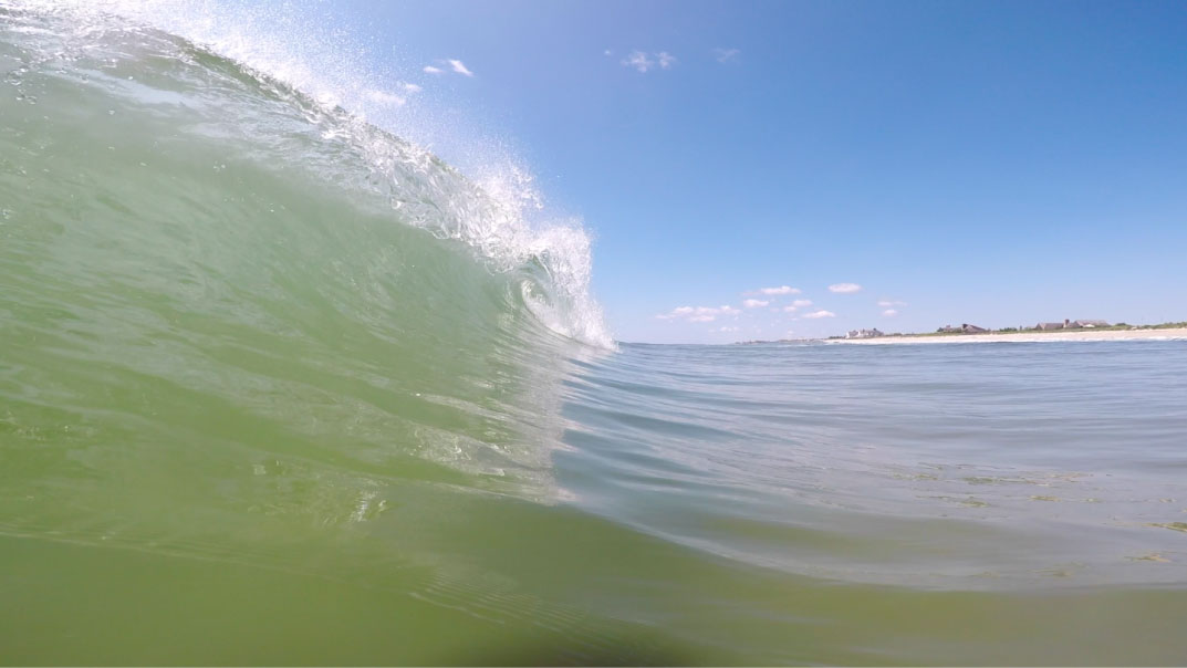 Folly-Beach-Maria-Swell.jpg