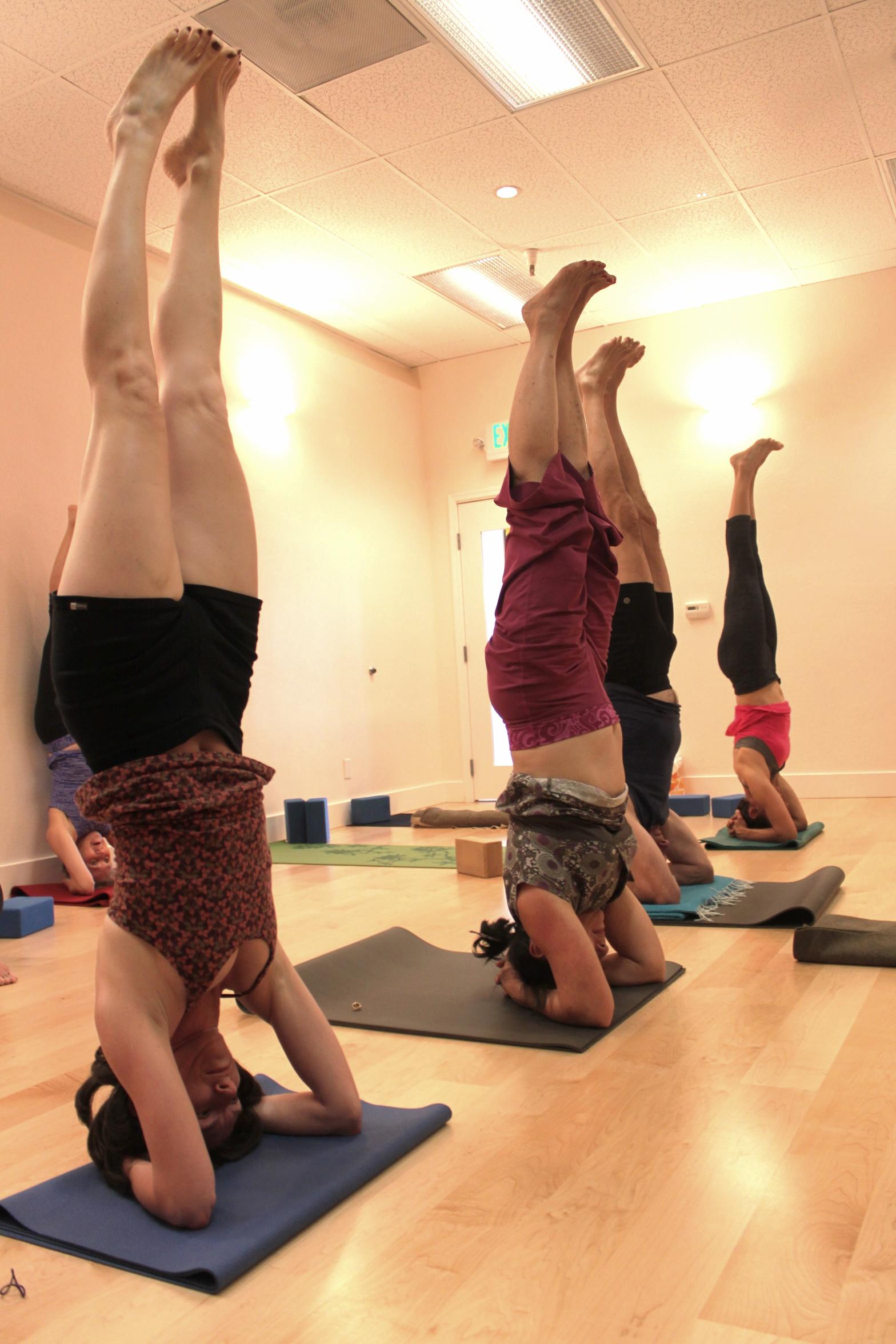 iyengar-studio-alignment-wellness
