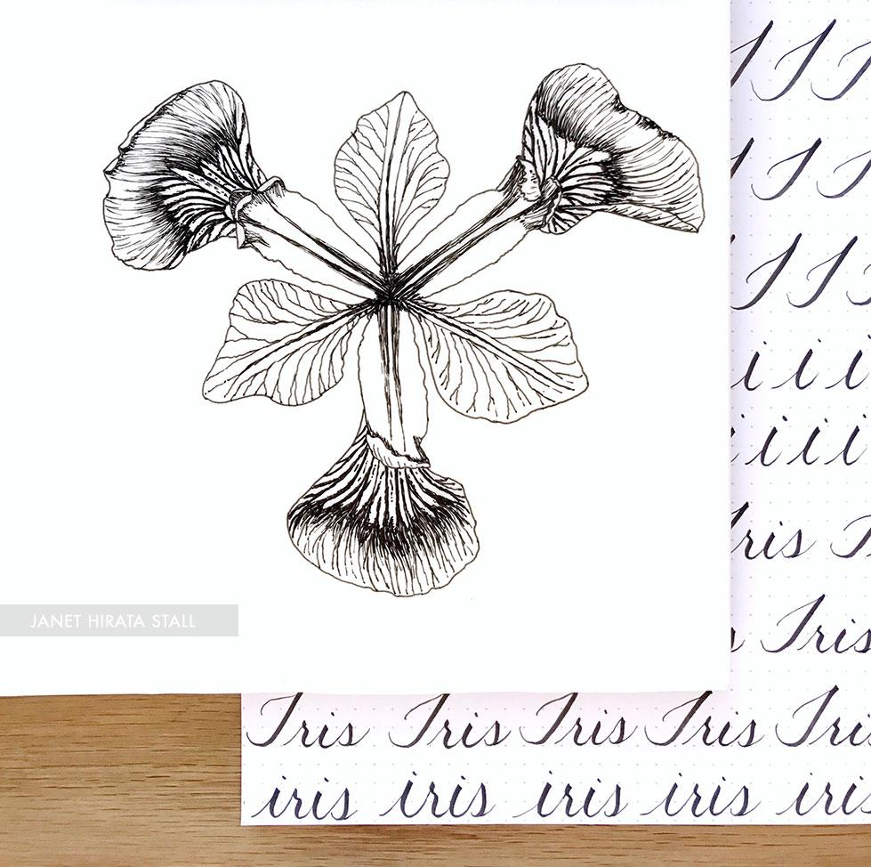 Pen & Ink, Handlettering