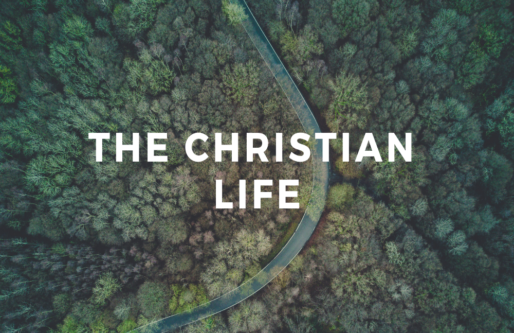 The Christian Life.png