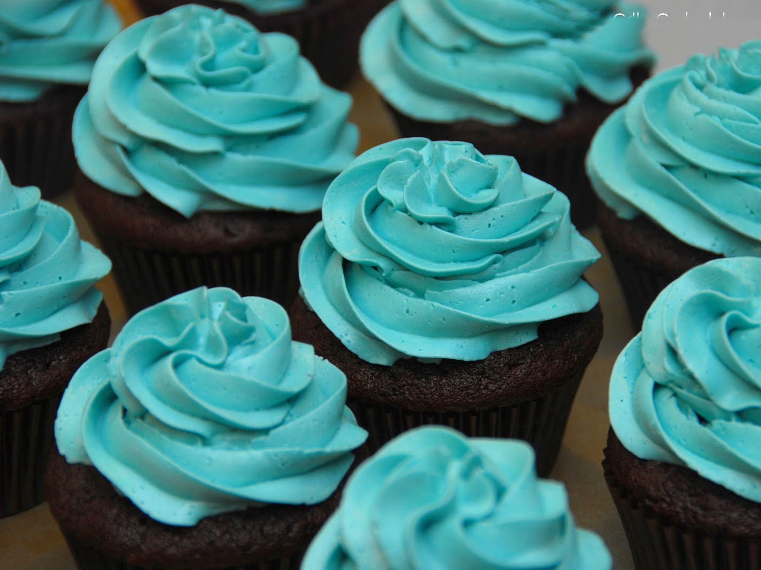 photo_products_top_cupcakes.jpg