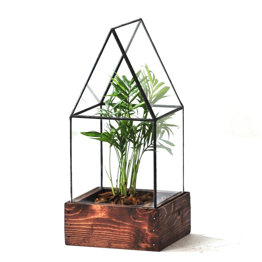 Terrarium by Lead Head Glass