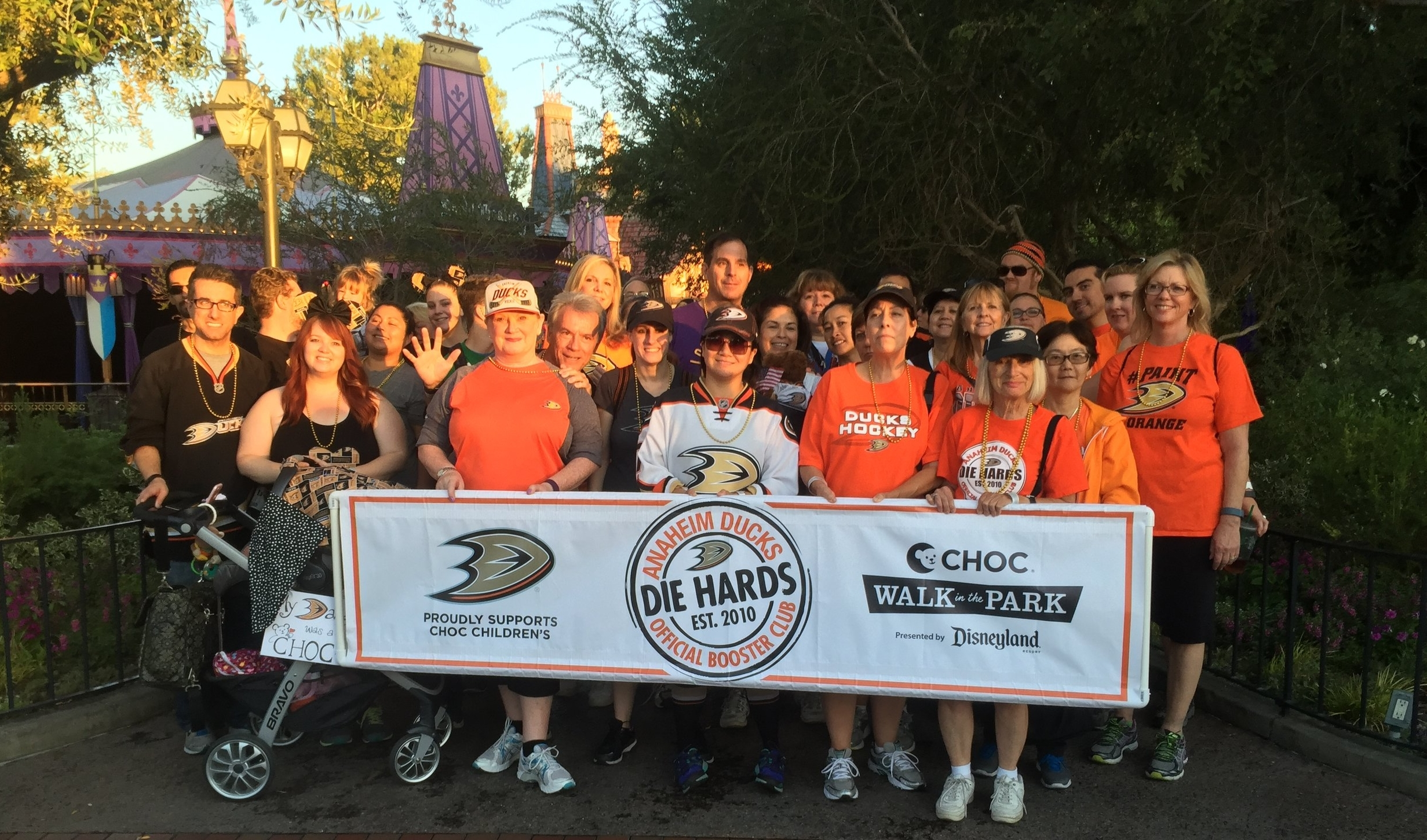 2015 Anaheim Ducks Die Hards CHOC Walk Team!