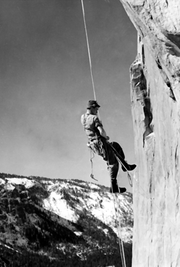 Bob Swift prusiking up to high point during the first ascent of El Cap Tree in 1952. Photo from Bob Swift collection. To see more Bob Swift photos go to
