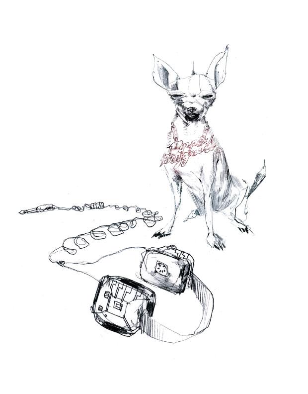 David-Choe-Chihuahua-Headphones