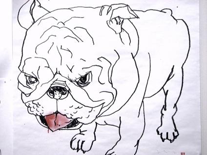 David-Choe-Bull-Dog-with-Glass-Eye