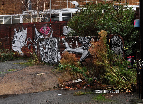 David-Choe-DVS1-Urban-Art-Lzarides-04