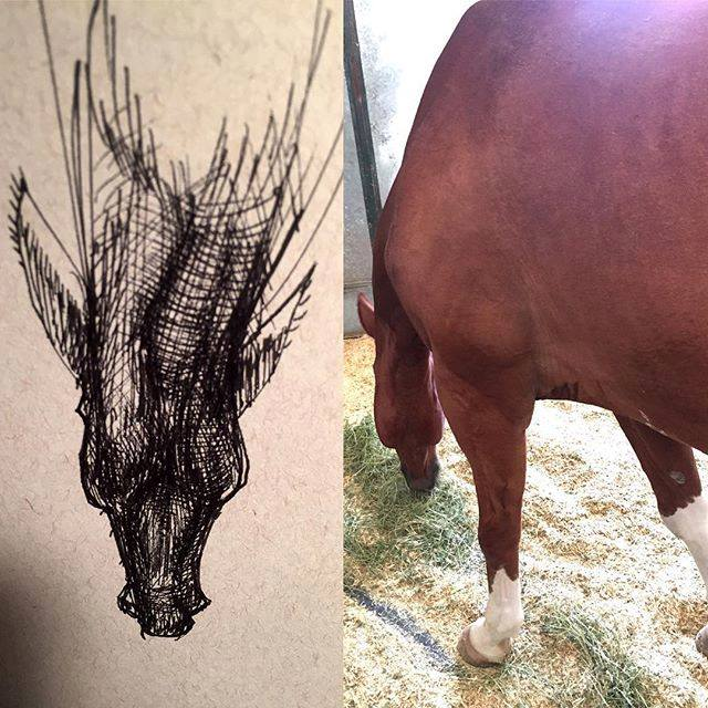 David-Choe-Ink-Study-of-the-Underside-of-a-horse-head