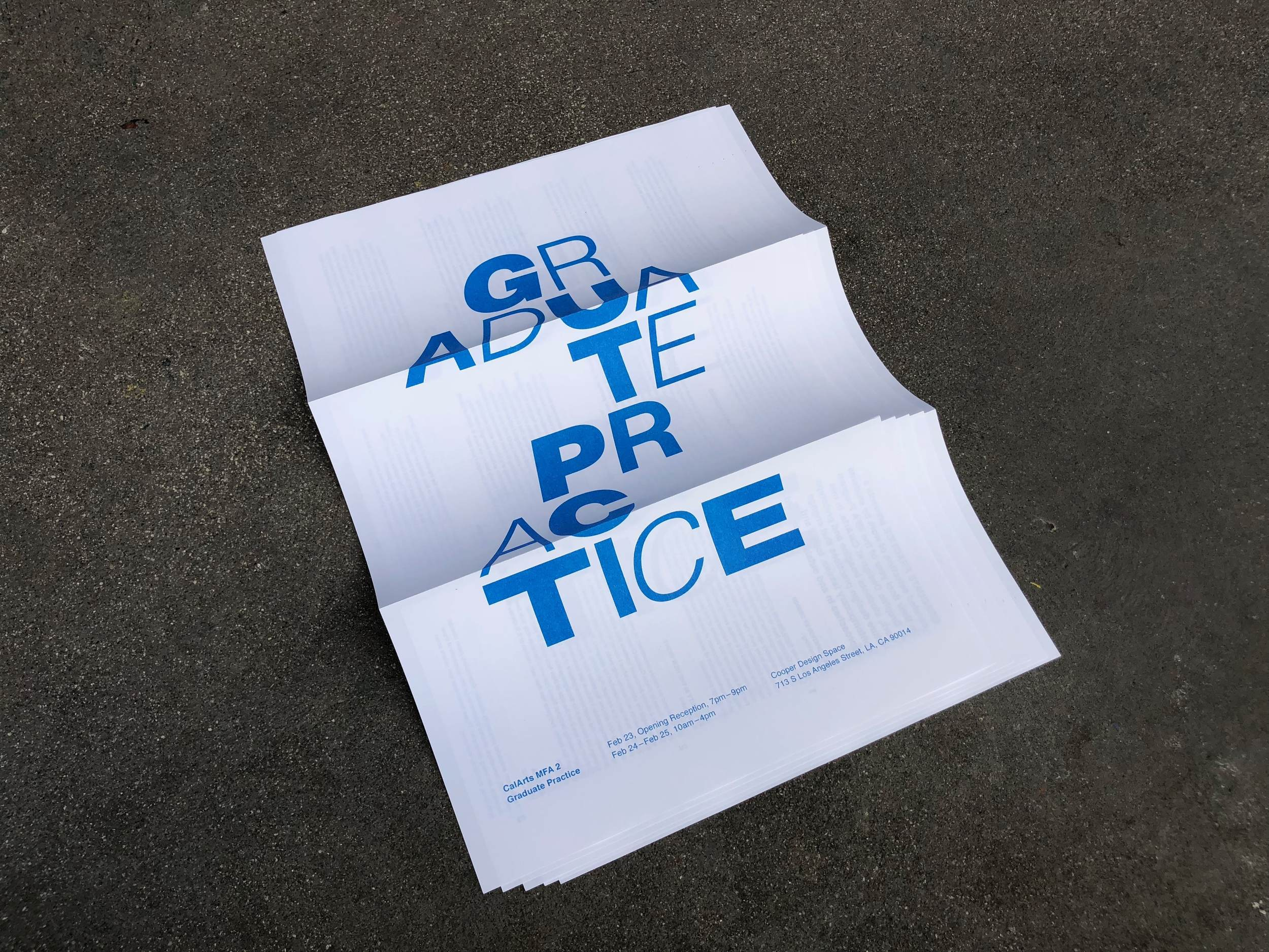 Graduate Practice . Exhibition identity designed in collaboration with Junki Hong, Anther Kiley, and Kathy Bates.