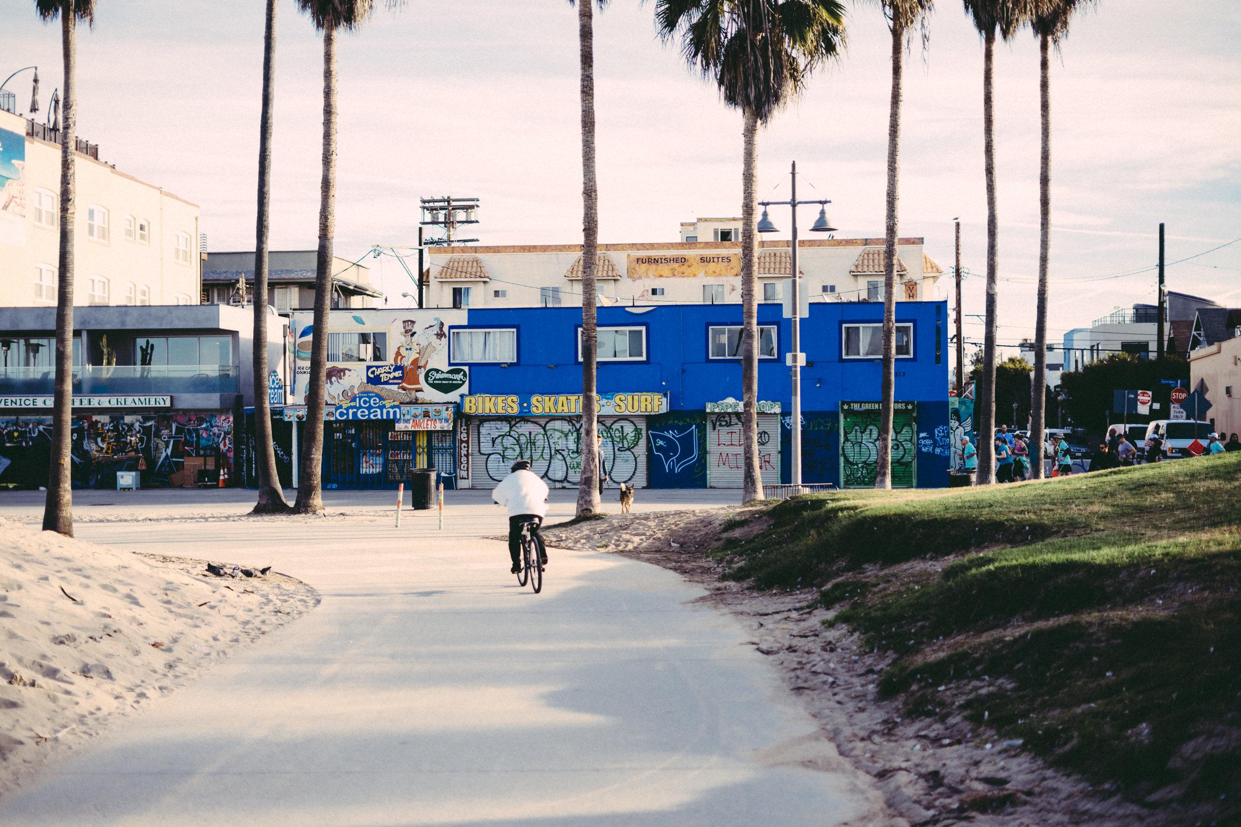 venice beach with david garber-226.jpg