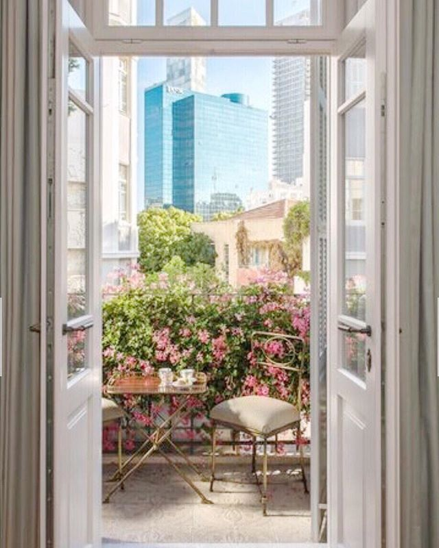 beautiful bauhaus views on rothschild boulevard 🙌  #fromwhereistand #bouganvillea photo by @vogueliving