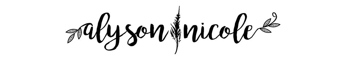 AN Logo.jpg