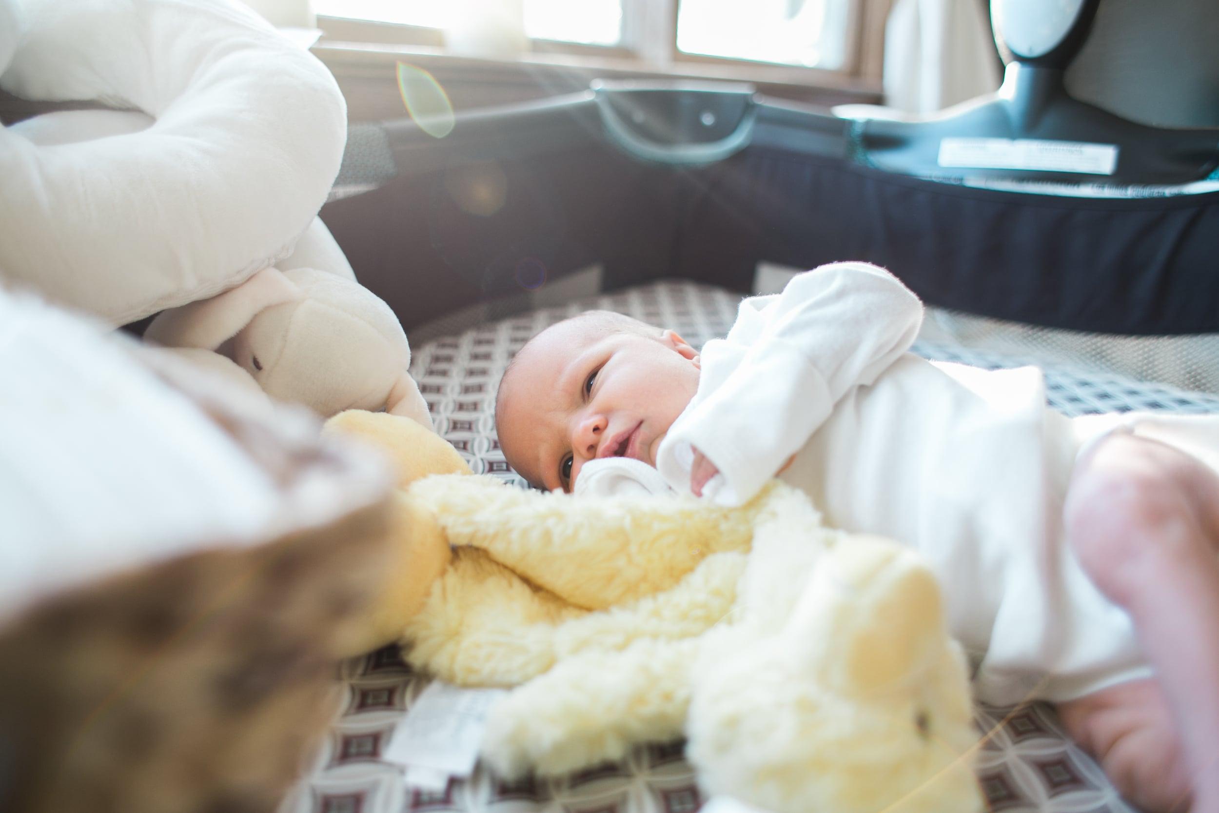 vanessa wyler lifestyle twin newborn photography pewaukee wisconsin