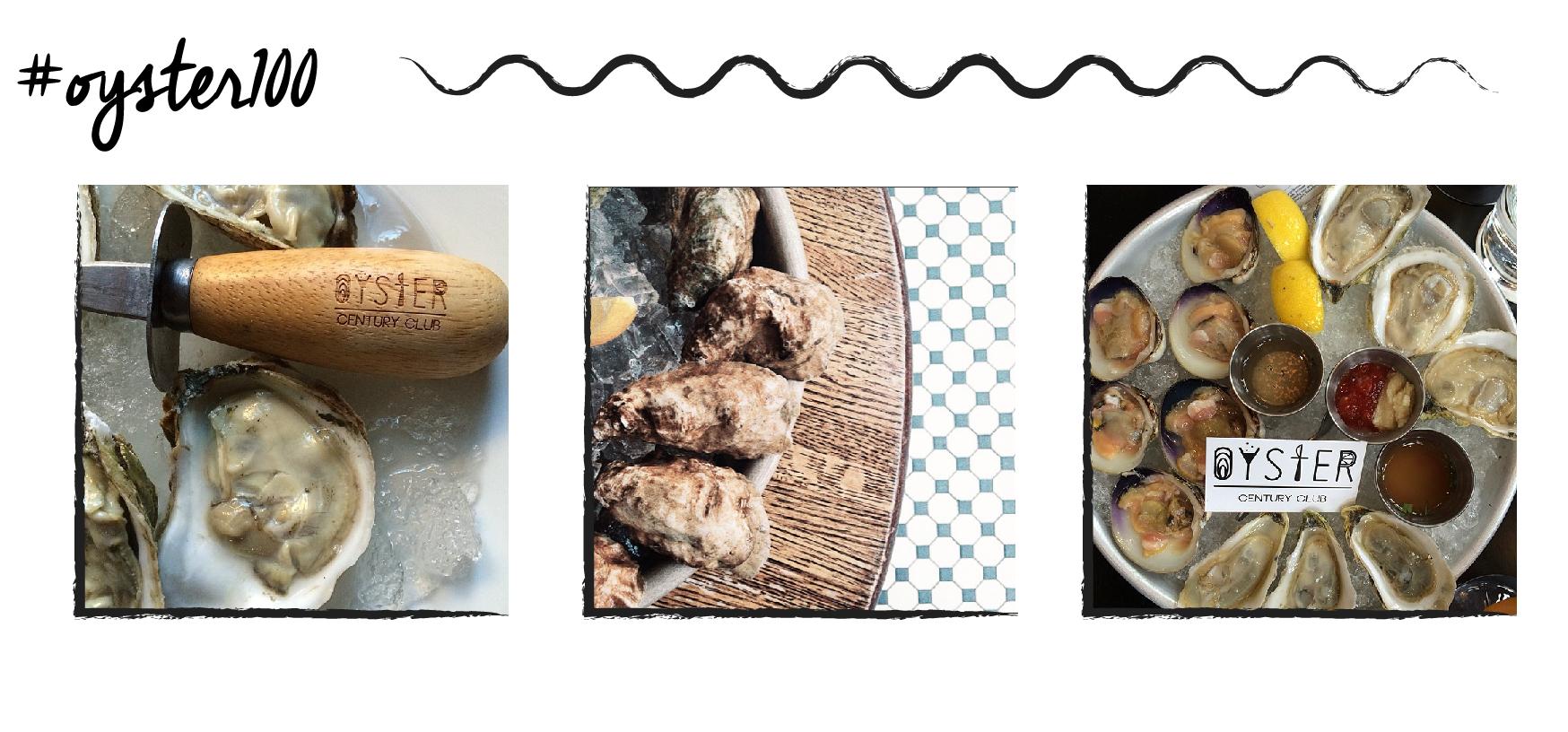 oyster images-01.jpg