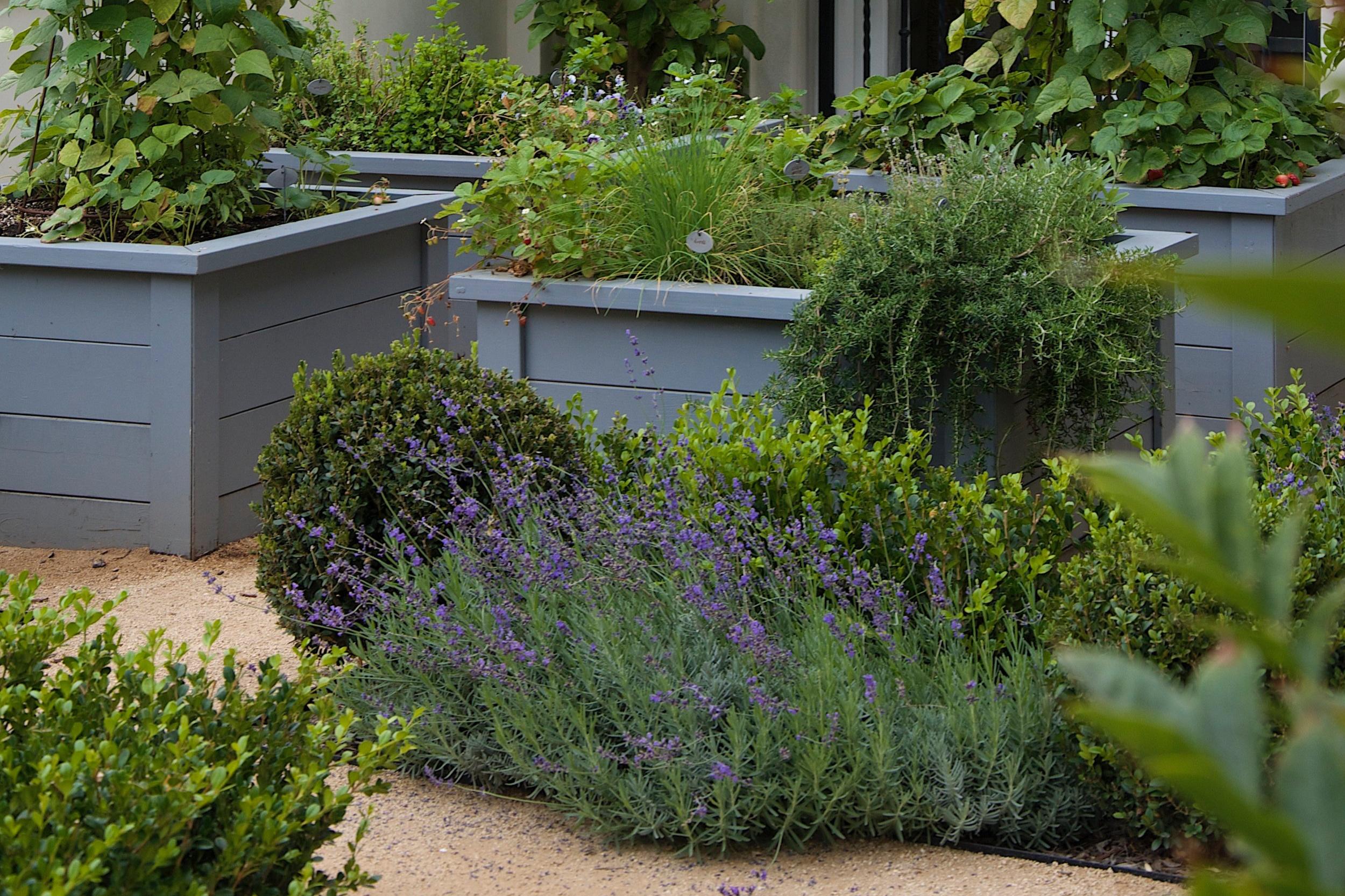 CALIFORNIA LANDSCAPE DESIGN   T he Collaborative Relationship Between Designer and Gardener   April 8, 2019