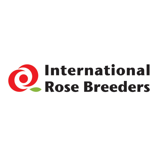 International Rose Breeders   Breeder