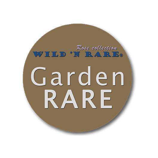 Garden Rare   Jan Spek Rozen - Collection