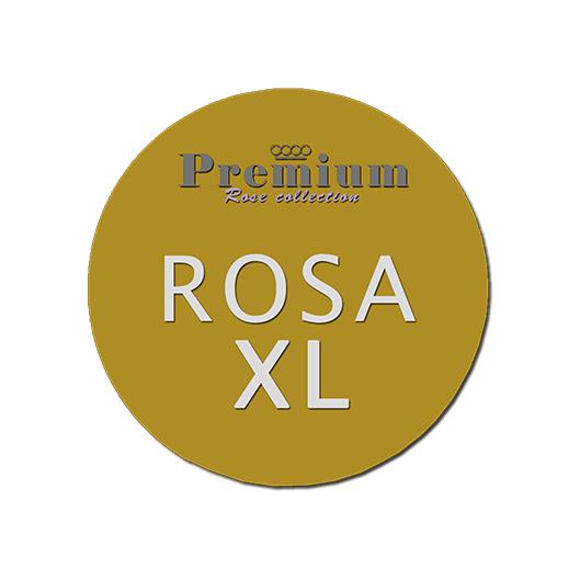Premium   Jan Spek Rozen - Collection
