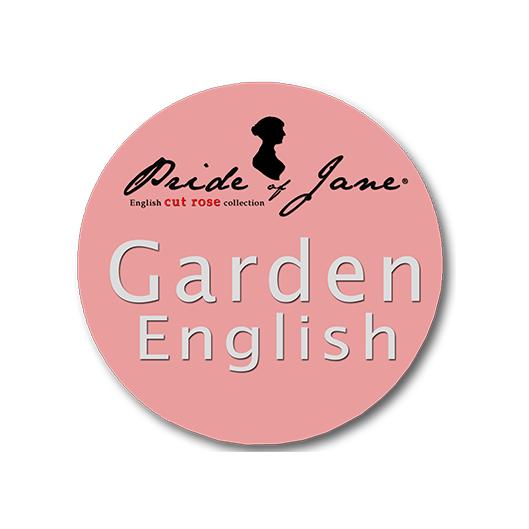 Pride of Jane   Jan Spek Rozen - Collection