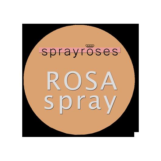 Spray Roses   Jan Spek Rozen - Collection