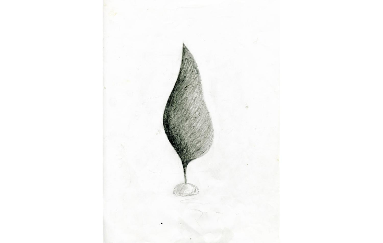 grafito sobre papel (14).jpg