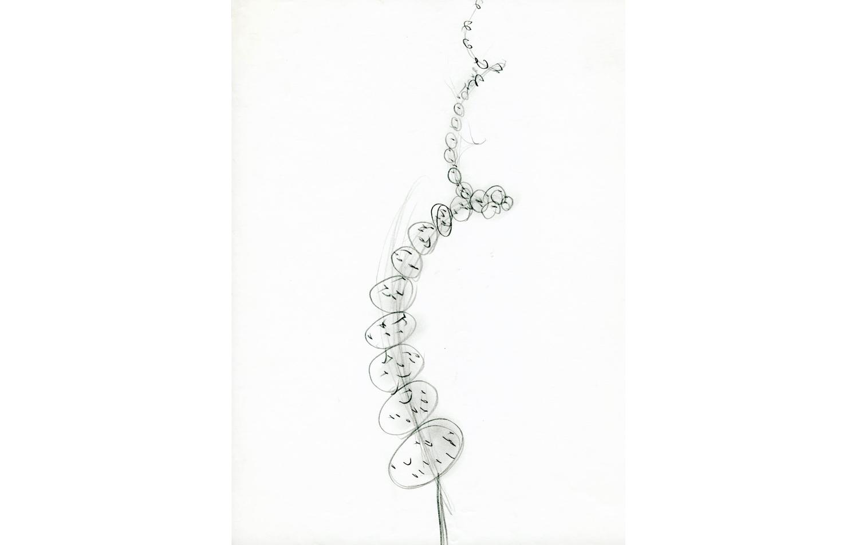 grafito sobre papel (68).jpg
