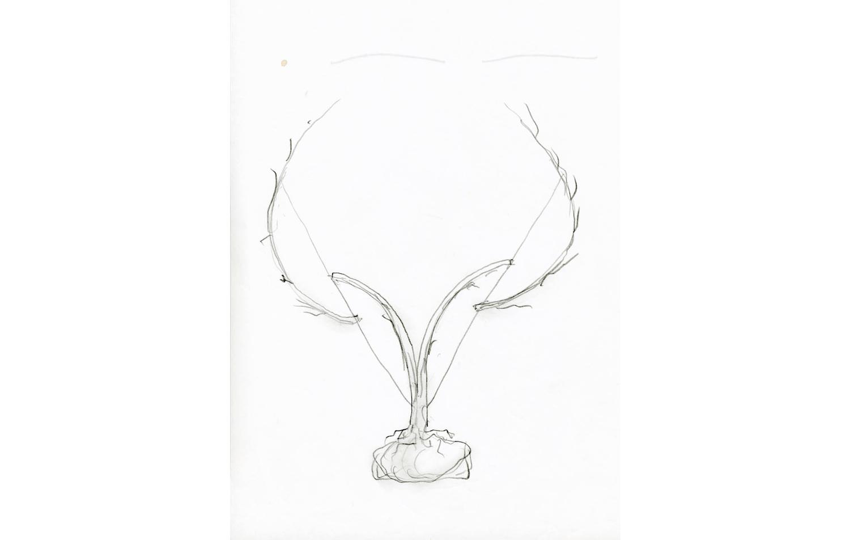 grafito sobre papel (70).jpg