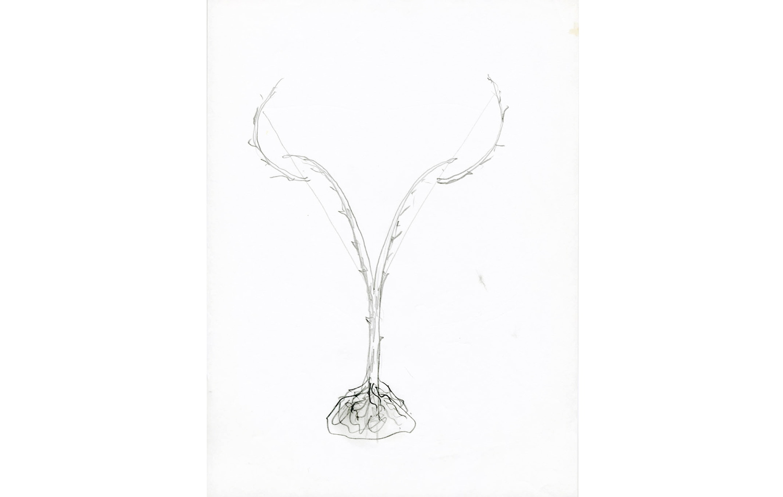 grafito sobre papel (71).jpg