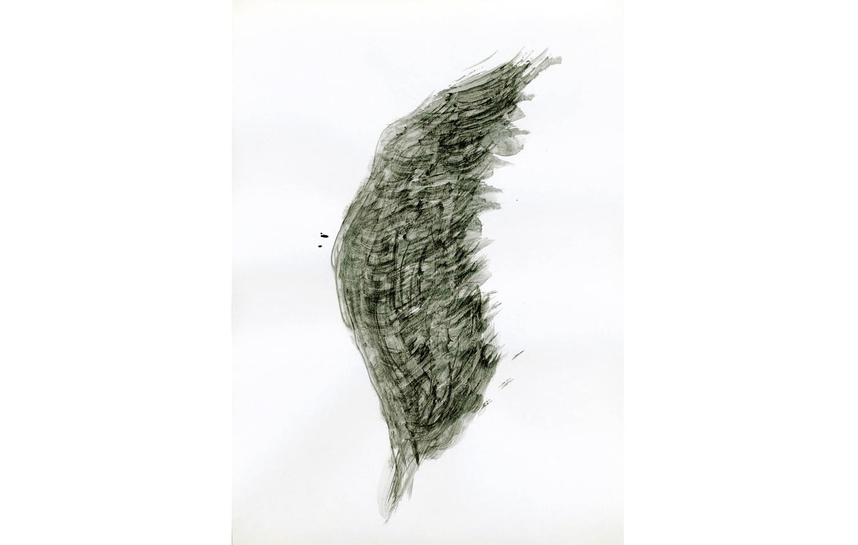 tintas chinas plumas (8).jpg