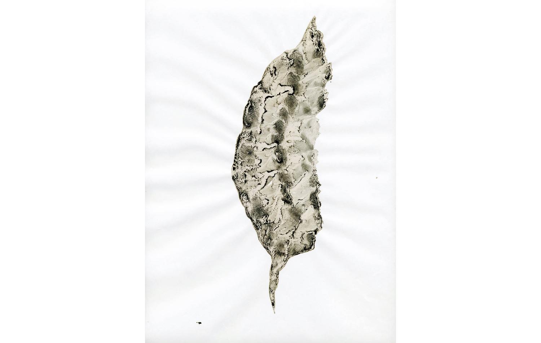 tintas chinas plumas (11).jpg