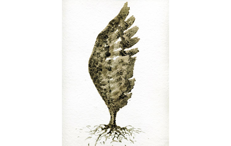 tintas chinas plumas (12).jpg