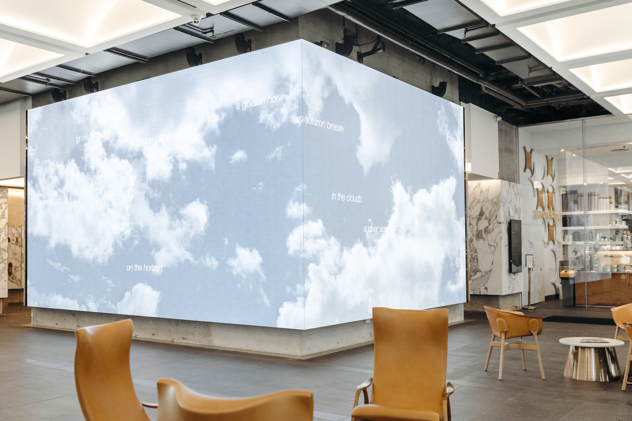 Annie Macindoe's video installation for 100 Creek Street. Image Credit: Art Pharmacy Consulting / Anwyn Howarth.