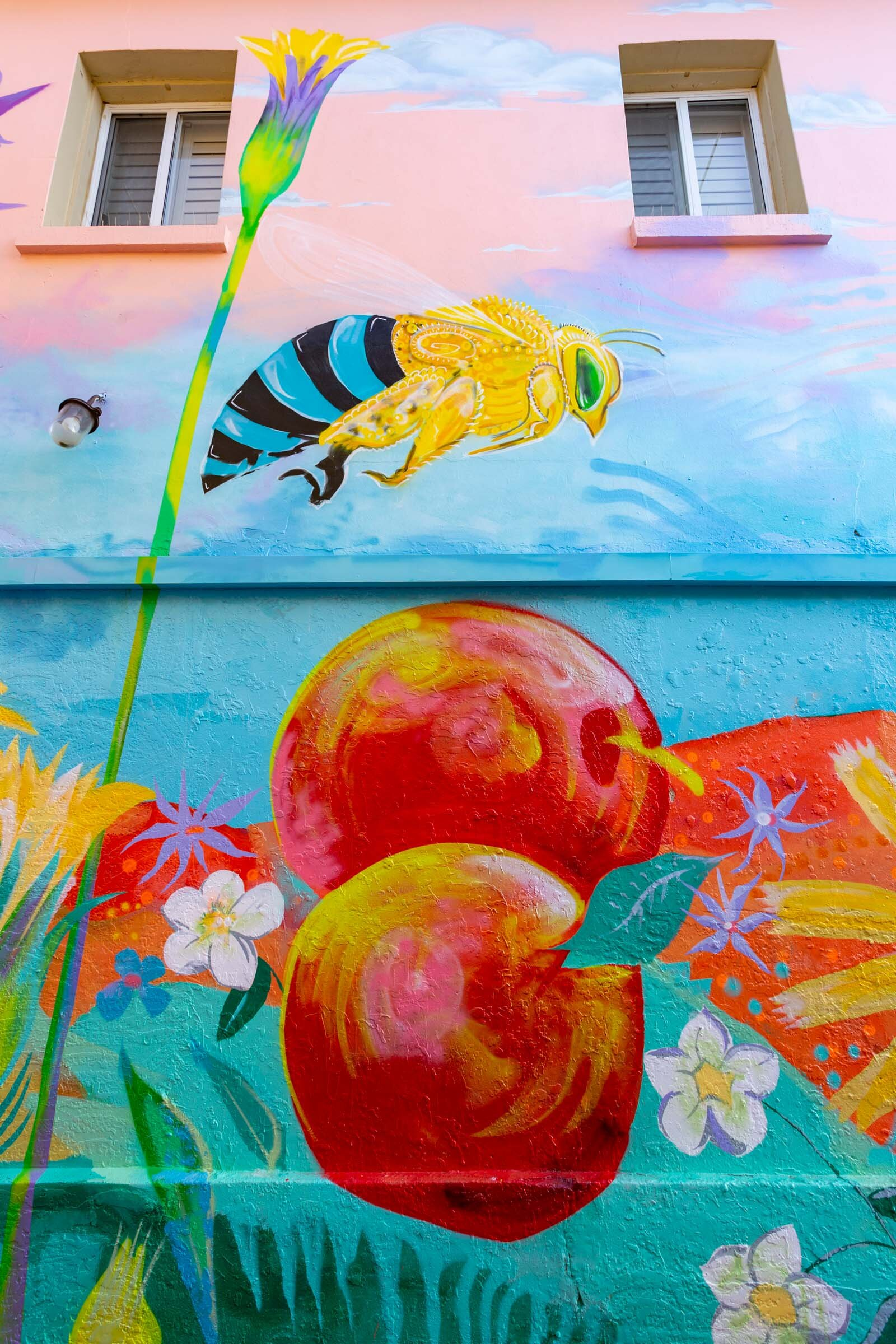 David and Noni Cragg's mural in Windsor. Image credit: Art Pharmacy Consulting / Jodie Barker