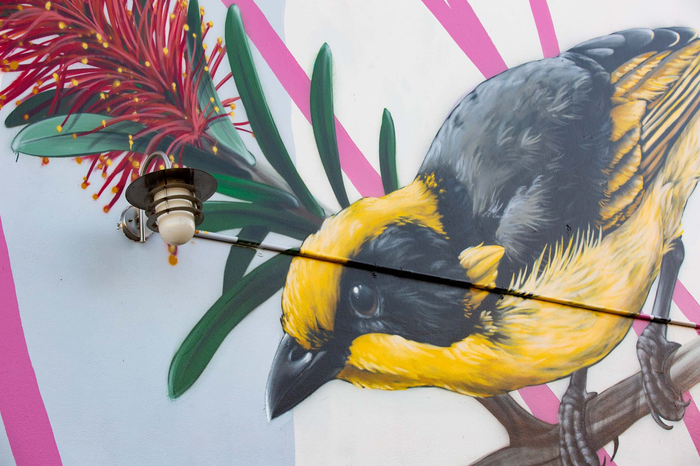 Thomas Jackson's mural in Windsor. Image credit: Art Pharmacy Consulting / Jodie Barker