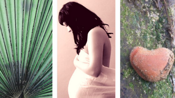 Portland Fertility Acupuncture - Creating a Path to Pregnancy