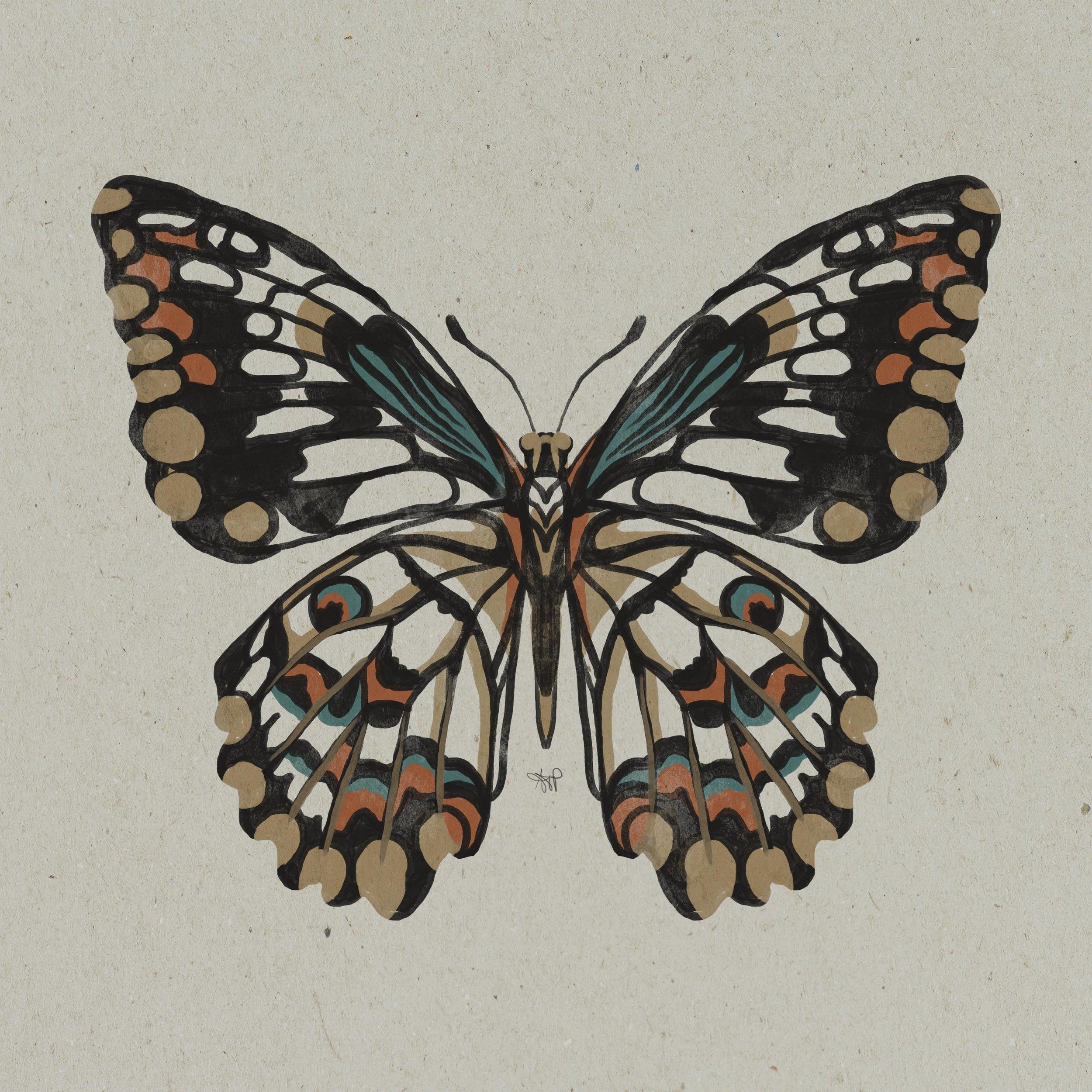 limeswallowtail.jpg