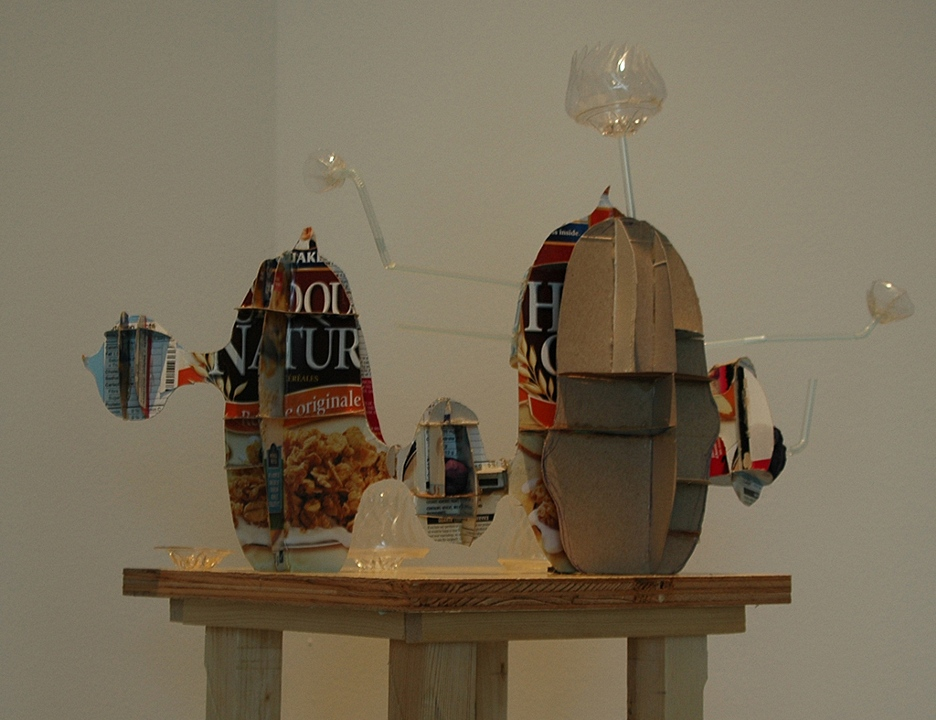 Subjunctive Furniture: Model for a Shelf, 2008