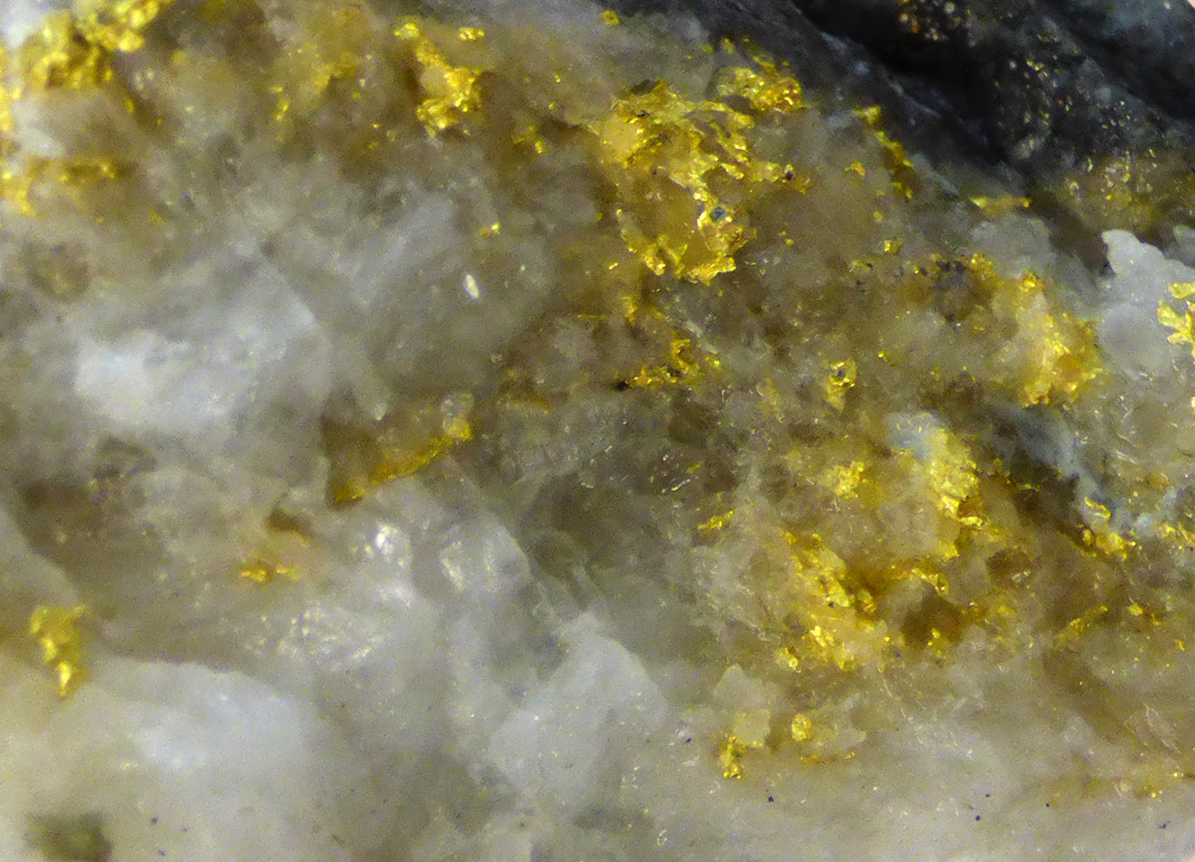 Gold in Quartz (supplied by Norton Gold Fields Ltd Paddington Operations, effects by Ben Wingad)