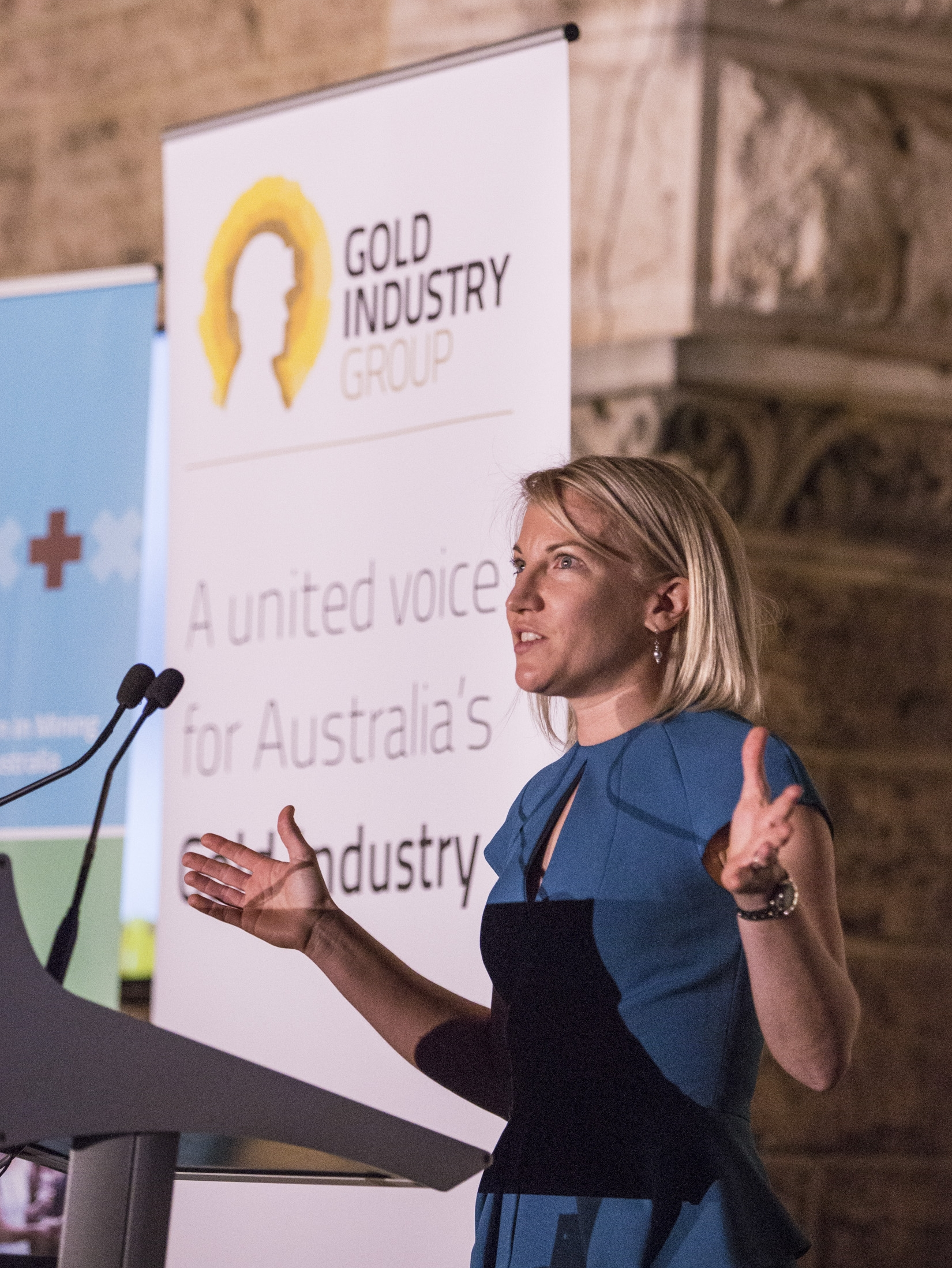 Kelly Carter, Vice Chairperson, Gold Industry Group and Vice President of Legal and Compliance,Gold Fields