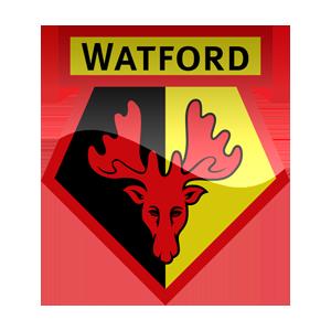 15-Watford FC logo.png