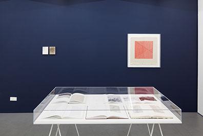 Exhibition View, Emak Bakia, curated by_Bettina Steinbrügge, Krobath Wien, 2016,   Photo: Rudolf Strobl